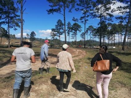 Terrateniente envió hombres armados para atacar a campesinos en Guaimaca